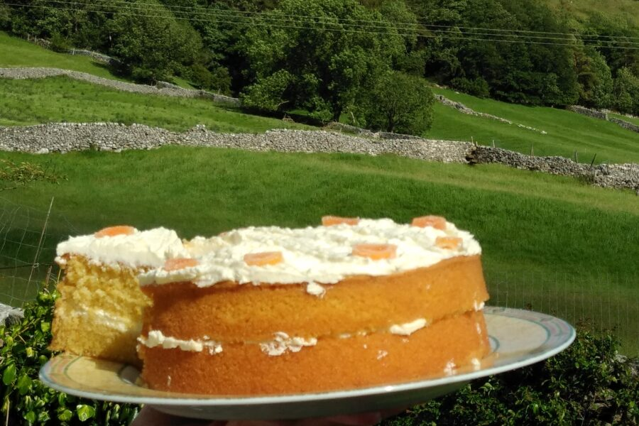 Taking a slice of orange cake