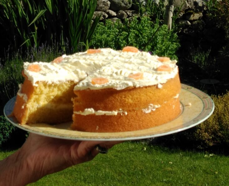 Jo's Orange Cake, against the backdrop of the beautiful Yorkshire Dales